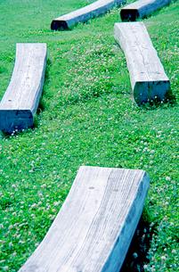 草地に置かれた丸太を二つに切ったベンチの写真素材 [FYI03176480]
