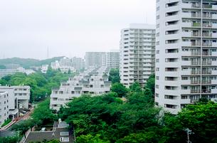 緑に囲まれた高層住宅街の写真素材 [FYI03176482]