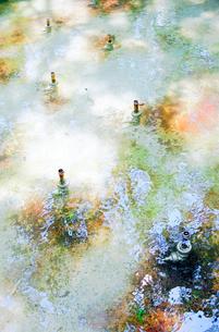 噴水を止めている噴水池の写真素材 [FYI03176485]