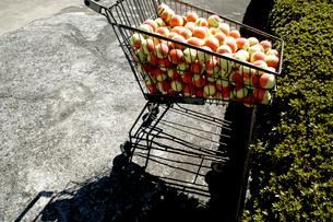ショッピングカートに載せられたテニスボールの写真素材 [FYI03176536]
