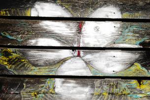 ペイントが剥がれた板塀の白い花の写真素材 [FYI03176597]