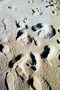 砂浜の足跡の写真素材 [FYI03176642]