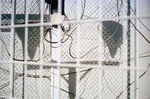 柵越しに見る白い壁に映る照明灯の影の写真素材 [FYI03176663]