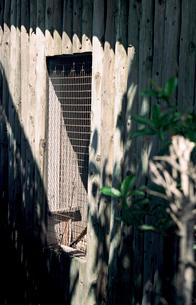 運動公園の用具入れの小屋の写真素材 [FYI03176694]