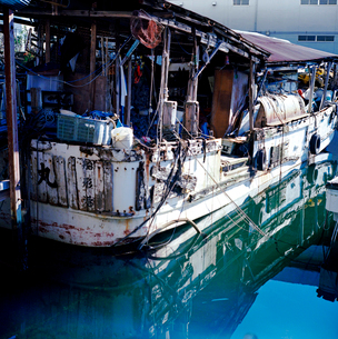 京浜運河の廃船の写真素材 [FYI03176869]