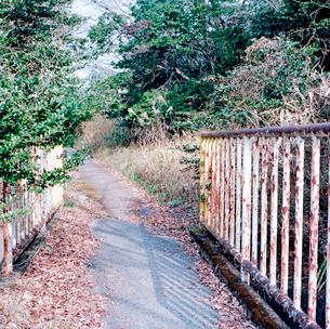 鉄柵のある冬の散策路の写真素材 [FYI03176892]