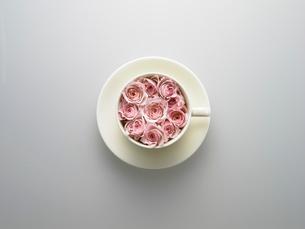 カップに入ったバラの写真素材 [FYI03177077]