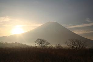 夜明けの富士山の写真素材 [FYI03177119]
