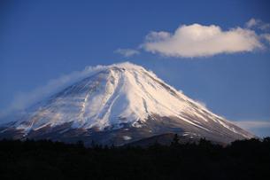 冬の富士山の写真素材 [FYI03177143]