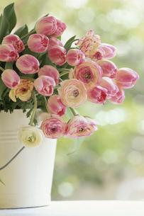 花瓶に生けられた花の写真素材 [FYI03177288]