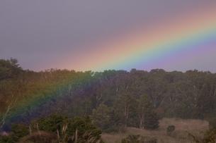 安比高原中の牧場に架かる虹の写真素材 [FYI03177704]