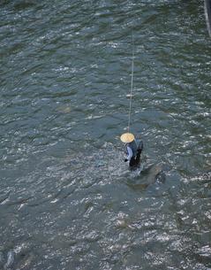 旭川で鮎釣りをする人 建部町 岡山県の写真素材 [FYI03177858]