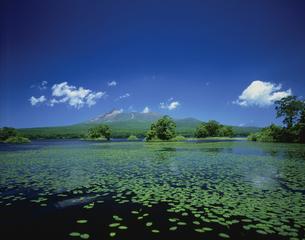 大沼公園から駒ケ岳 北海道の写真素材 [FYI03177880]