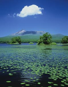 大沼公園と駒ヶ岳 北海道の写真素材 [FYI03177882]