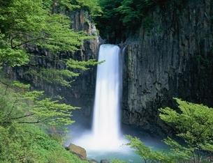 苗名滝   妙高高原町 新潟県の写真素材 [FYI03177911]