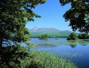 大沼公園と駒ケ岳   北海道の写真素材 [FYI03177939]