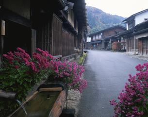 秋の妻籠宿  南木曽 長野県の写真素材 [FYI03178115]