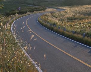 脇にススキのはえたカーブする道路 秋吉台 山口県の写真素材 [FYI03178145]