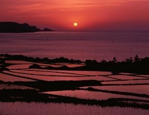 棚田と日本海の夕日の写真素材 [FYI03178178]