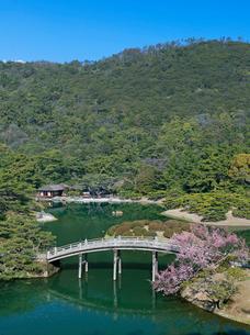 彼岸桜咲く栗林公園の写真素材 [FYI03178521]