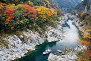 大歩危峡の吉野川と観光舟の写真素材 [FYI03178537]