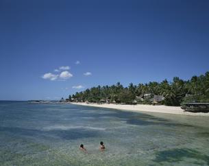 タンブリンビーチ セブ島 フィリピンの写真素材 [FYI03178634]