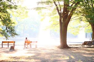 ベンチに腰掛ける人の写真素材 [FYI03178875]