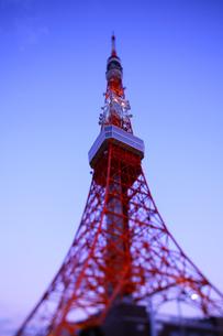 東京タワーの写真素材 [FYI03178948]