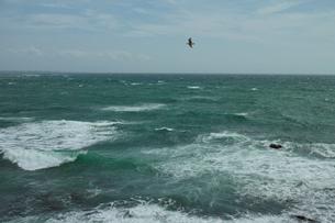 wave 柴崎海岸に面した建物の4階から海を撮るの写真素材 [FYI03178964]