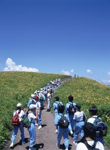 夏の霧ヶ峰にハイキングに行く日本人中学生たち 諏訪市 長野県の写真素材 [FYI03179165]