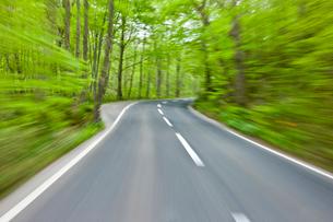車内から見た流れる新緑の写真素材 [FYI03180688]