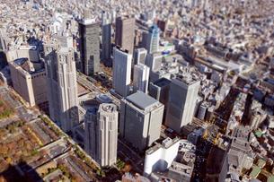 新宿高層ビル群の写真素材 [FYI03180689]
