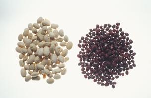 大豆と小豆の写真素材 [FYI03181428]