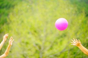 新緑とボール遊びをする親子の手の写真素材 [FYI03182068]