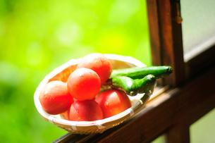 窓辺に置かれた夏野菜の写真素材 [FYI03182126]