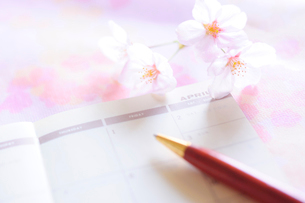 桜の花と手帳の4月の頁とボールペンの写真素材 [FYI03182282]