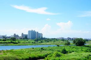 多摩川と夏空の写真素材 [FYI03182366]