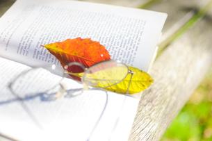 ベンチのうえのフランス語の詩集と落ち葉の栞と眼鏡の写真素材 [FYI03182381]