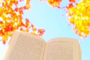 フランス語の詩集と紅葉した木と青空の写真素材 [FYI03182382]