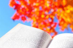 フランス語の詩集と紅葉した木と青空の写真素材 [FYI03182384]