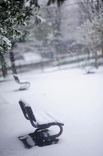 雪の日の公園とベンチの写真素材 [FYI03182433]
