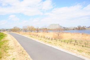 冬枯れの多摩川河川敷と遊歩道の写真素材 [FYI03182519]