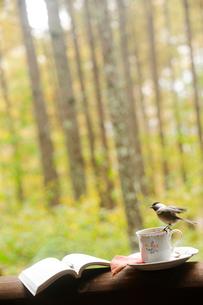コーヒーカップと本と野鳥の写真素材 [FYI03182546]