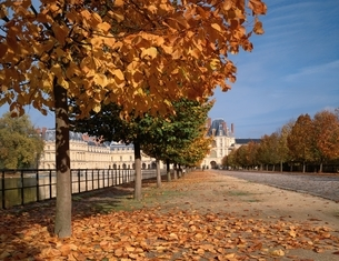 フォンテンブロー城の秋   パリ近郊 フランスの写真素材 [FYI03182700]