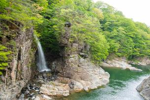 若葉の龍王峡虹見の滝と鬼怒川の写真素材 [FYI03183285]