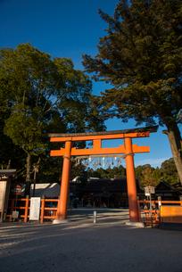 上賀茂神社三門の写真素材 [FYI03183483]