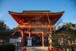上賀茂神社桜門の写真素材 [FYI03183498]