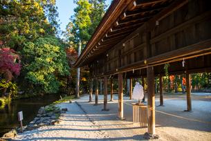 上賀茂神社の写真素材 [FYI03183509]