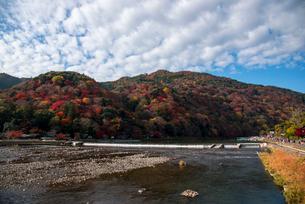 紅葉嵐山と桂川の写真素材 [FYI03183512]