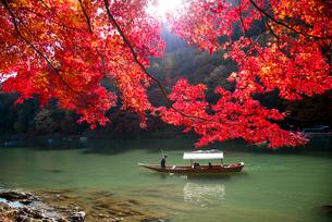 紅葉嵐山と保津川下りの写真素材 [FYI03183525]